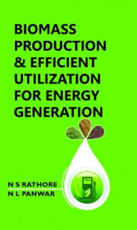 Biomass Production And Efficient Utilization For Energy Generation