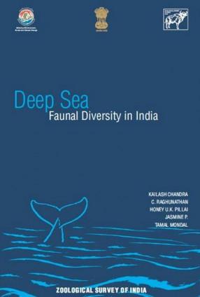 Deep Sea: Faunal Diversity in India