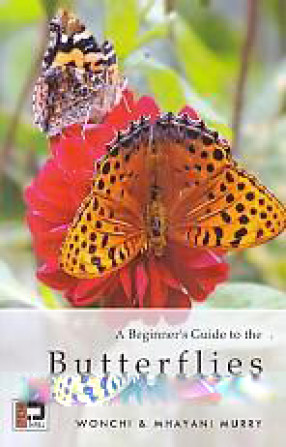 A Beginner's Guide to the Butterflies of the Himalayan Realm