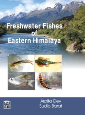 Freshwater Fishes of Eastern Himalaya