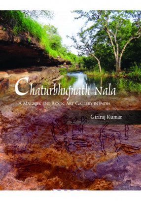 Chaturbhujnath Nala: A Magnificent Rock Art Gallery in India